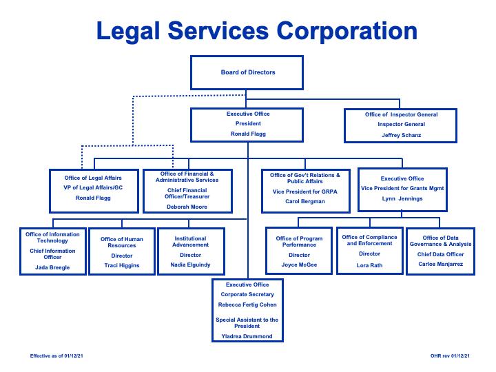 LSC Organization Chart